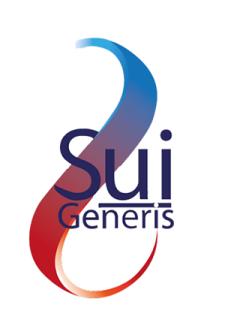 Assemblea pubblica Sui Generis Network - 20 gennaio 2016 - ore 18.30 - Palazzo Altieri - Banco Popolare - Piazza del Gesú, 49 - Roma