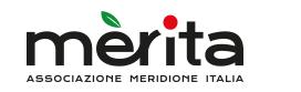 """Ciclo di incontri """"Il Mezzogiorno d'Italia nella Strategia europea energia-clima"""" - 14 luglio 2020 – ore 11 - pagina Facebook di Merita"""